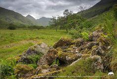 Glen Shiel wilderness, Highlands