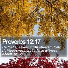 Proverbs 12:17 He that speaketh truth sheweth forth righteousness: but a false witness deceit. (KJV)  #Christian #Worship #ChristianLockScreens #VerseOfTheDay http://www.bible-sms.com/