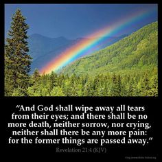 """And God shall wipe away all tears from their eyes; and there shall be no more death, neither sorrow, nor crying, neither shall there be any more pain: for the former things are passed away."" - Revelations 21:4"
