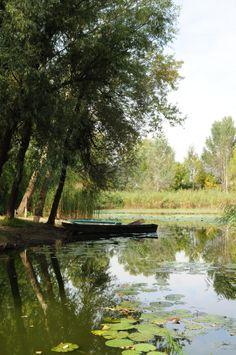 Baračka,Sombor