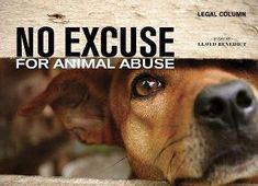 People who abuse animals do not deserve to live!! Theses animals r put on this earth to love us unconditionally and they deserve to be loved!!!!!!!!