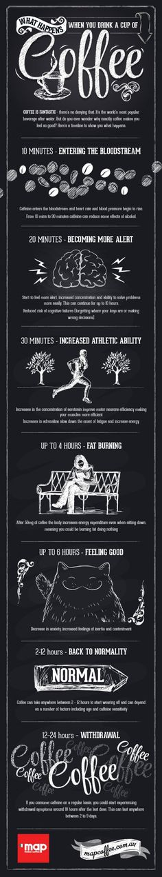 coffe Infographics. What happens when you drink a cup of coffee?