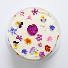 Flowerfetti cake with a natural funfetti sponge and edible flowers Bolo Floral, Floral Cake, Cupcakes, Cupcake Cakes, Pretty Cakes, Beautiful Cakes, Baby Shower Cakes, Edible Flowers Cake, Flower Cakes