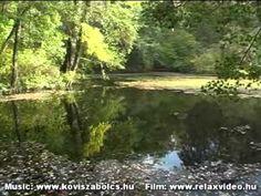 Kövi Szabolcs: A Tündér idézés CD, Tündérkert DVD, Evoking the Fairies (audio CD minta/sample) - YouTube Country Roads, River, Songs, Music, Youtube, Outdoor, Musica, Outdoors, Musik