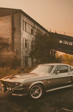 1967 Ford Mustang Shelby GT500 Eleanor by Pavel Petrov