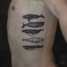 Whale tattoo . Amazing.