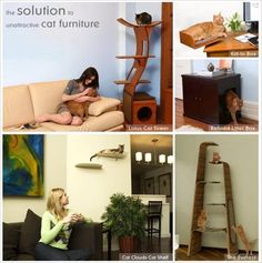 Good looking cat furniture for your home