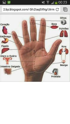 When people talk about Hand reflexology Points (zone therapy), they usually make with massage techniques and acupressure points related to Reflexology Reflexology Points, Reflexology Massage, Acupressure Points, Massage Shiatsu, Le Pilates, Acupressure Treatment, Massage Techniques, Massage Therapy, Health Benefits