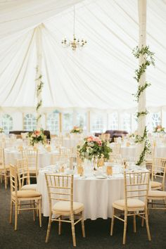 reception (tent)  gold chairs/white tablecloths, vines wrapped around the poles