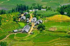 A typical minority village in Sapa, Vietnam.