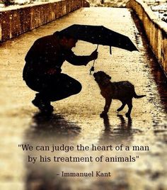 """ We can judge the heart of a man by his treatment of animals."" Immanuel Kant"