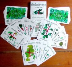 ogham oracle deck from the British Druid Order