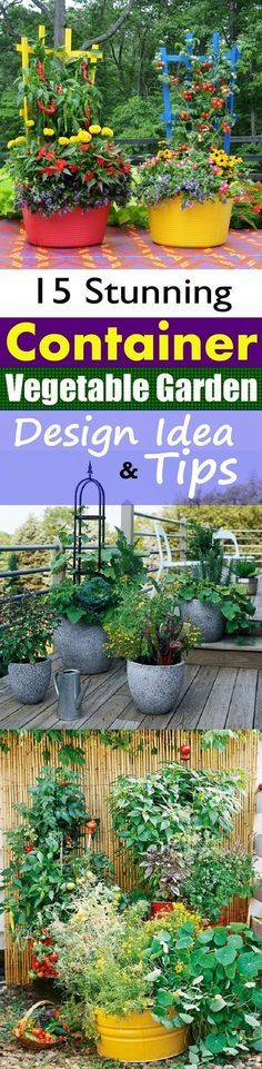 Create a Container Vegetable Garden. container gardening, container gardening ideas, container gardening tips, tips for growing in pots, container plans, container gardening inspiration, the best plants for pots, growing flowers in pots. #containergardening, #growinginpots #containergardens #container #containergarden #containergardening #containergardeningideas #containergardeningtips #flowergardening