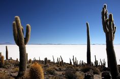 World's largest salt flats in Uyuni, Bolivia. Bolivia Peru, Bolivia Travel, Uyuni Bolivia, Places To Travel, Places To Visit, Lake Titicaca, Andes Mountains, World View, South America Travel