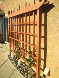 Пример деревянной шпалеры у стены
