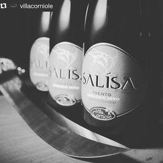 #Repost @villacorniole  Salísa Dosaggio Zero. Il nuovo Metodo Classico Trento DOC  di Villa Corniole. #blancdeblanc - L'espressione della  Valledicembra. #Salísa #DZ#spumante #Trento#Valledicembra #sparkling #bubbles #eleganceinmountainwines #classicmethod