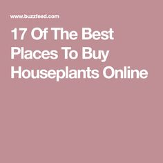 17 Of The Best Places To Buy Houseplants Online