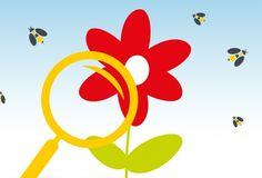 Bee Careful - Informationen rund um die Biene und die Imkerei