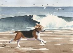 Hey, I found this really awesome Etsy listing at https://www.etsy.com/listing/46070682/beagle-at-the-beach-dog-art-print-signed