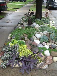 Rock garden hellstrip