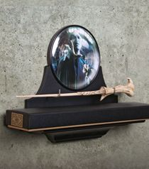 Lord Voldemort Wand Wall Display