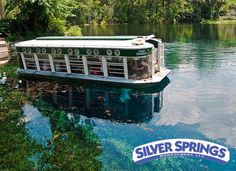 Ocala: Silver Springs Glass Bottom Boat Rides run every 30-45 minutes, from 9AM to 6PM daily and cost  $11 for Adults $10 for Seniors and Youth (17 and under) while 5 and under ride free