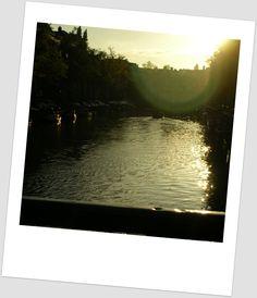 """""""Tente. Sei lá, tem sempre um pôr-do-sol esperando para ser visto, uma árvore, um pássaro, um rio, uma nuvem. Pelo menos sorria, procure sentir amor. Imagine. Invente. Sonhe. Voe."""" Caio Fernando Abreu"""