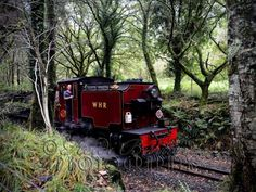October 2013 - the Welsh Highland Railway passing the campsite we stayed in, just outside Beddgelert. As I was taking this shot I was . October 2013, Campsite, Welsh, The Outsiders, Shots, Train, Gallery, Image, Camping