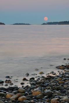 Moonrise at Rathtrevor Beach - Michael Galan, 2012 myPQB Story Contest #vancouverisland #explorebc #canada