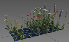 ArtStation - Sunny Hill - Cryengine Environment, Lukas Patrus