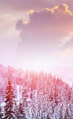 ↑↑TAP AND GET THE FREE APP! Nature Snow Landscape White Pink Winter Sky Clouds Cold North HD iPhone 4 Wallpaper