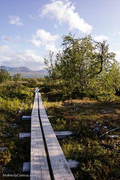 The start of the Kungsleden in Abisko national park.