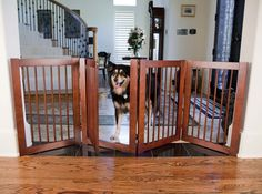 Room partitions for dogs | ideas | Pinterest | Dog rooms, Dog and ...