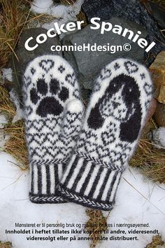 Cocker Spaniel Mittens Ravelry: Cocker Spaniel Mittens pattern by Connie H Design Record of Knitting Yarn spinning, weaving and stitching jobs . Knitted Mittens Pattern, Crochet Mittens, Fingerless Mittens, Knitted Gloves, Knit Crochet, Knitting Charts, Knitting Stitches, Knitting Socks, Knitting Patterns
