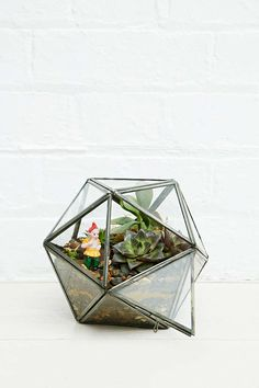 Urban Grow Star Terrarium Planter in Bronze - Urban Outfitters