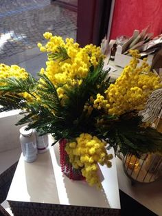 mimosa! The Beauty Parlor Bioprofumeria www.thebeautyparlor.it