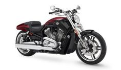 183 Pictures V Rod Muscle Cool
