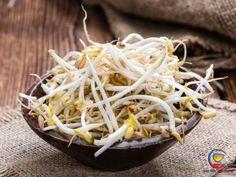 Mách bạn cách trị tiểu buốt tại nhà nhanh nhất, an toàn và hiệu quả Bean Sprouts Benefits, Health Benefits Of Beans, Vegan Gluten Free, Vegan Vegetarian, Alfalfa Sprouts, Coconut Flakes, Lower Cholesterol, The Fresh, Spices