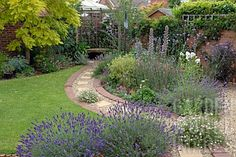 pathway borders   ... _GRAVEL_PATH_IN_SUBURBAN_BACK_GARDEN_WITH_COLOURFUL_BORDERS_AND_LAWN