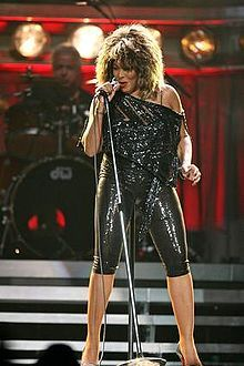 Tina Turner concert...how much fun Denise & I had that night..