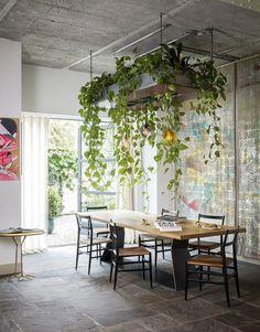 Indoor Plant Wall, Hanging Plant Wall, Indoor Plants, Indoor Herbs, Diy Hanging, Indoor Gardening, Air Plants, Organic Gardening, Interior Plants