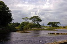 Wick, Caithness, Scotland by Grisleyreg, via Flickr