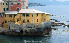 Marina Cvetaeva racconta Boccadasse, Genova  Una delle mie poetesse russe preferite, ospite in un angolo caratteristico di Genova, da visitare assolutamente in tutto l'arco dell'anno. Pescatori e gatti....come raccontava una canzone