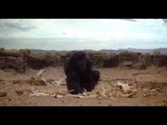 2001: A Space Odyssey - The Dawn of Man - YouTube