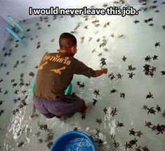 Different Career Options In Marine Biology  Jobs And Scope In