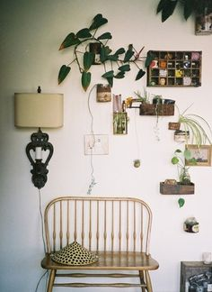 Charming walls with sconce, little plants,
