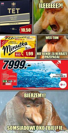 Wtf Funny, Funny Memes, Dead Memes, Dramione, Grumpy Cat, Lego Star Wars, Poland, Einstein, Funny Animals