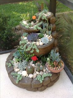 Succulent Stone Planters I could use for miniature garden Succulents In Containers, Cacti And Succulents, Planting Succulents, Succulent Landscaping, Front Yard Landscaping, Landscaping Ideas, Mini Jardin Zen, Landscape Design, Garden Design
