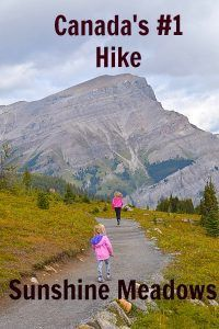 Sunshine Meadows hike: Why it's rated in Canada – Travel Destinations Travel With Kids, Family Travel, Family Camping, Camping Tips, Banff National Park, National Parks, Visit Canada, Canada Canada, Banff Canada