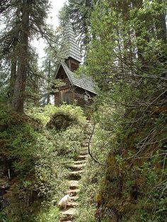 Cabana na floresta…